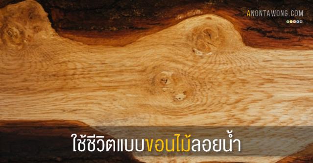 20150727_Driftwood