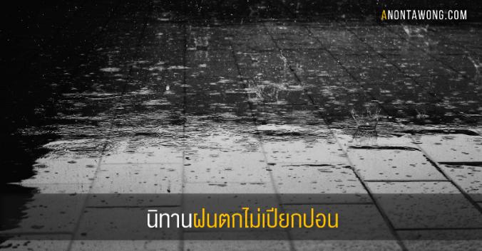 20170523_rainnowet